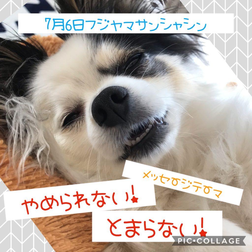 7月6日フジヤマサンシャイン告知!